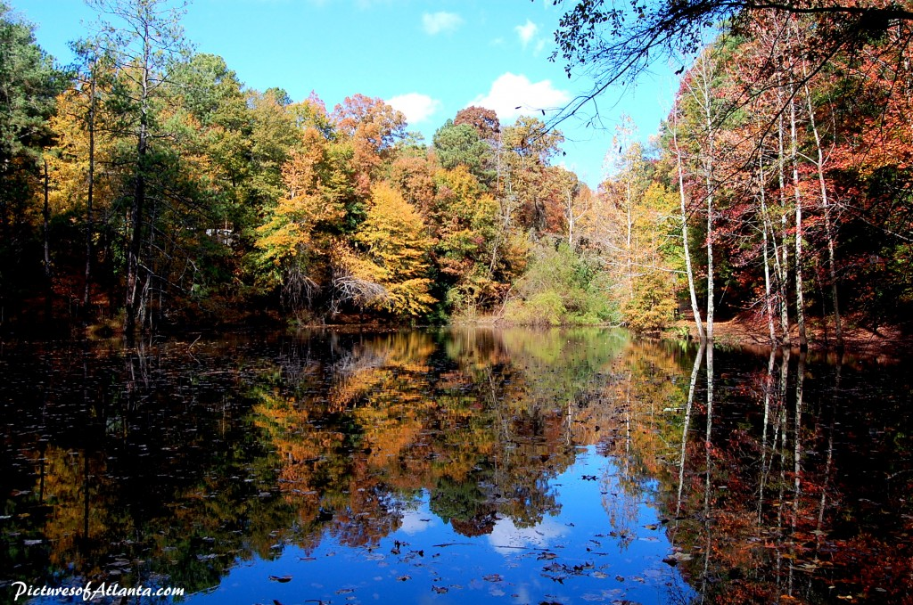 pond-at-chastain-park1